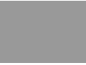 Peter-Lennox-Logo-30-Years-Light-300